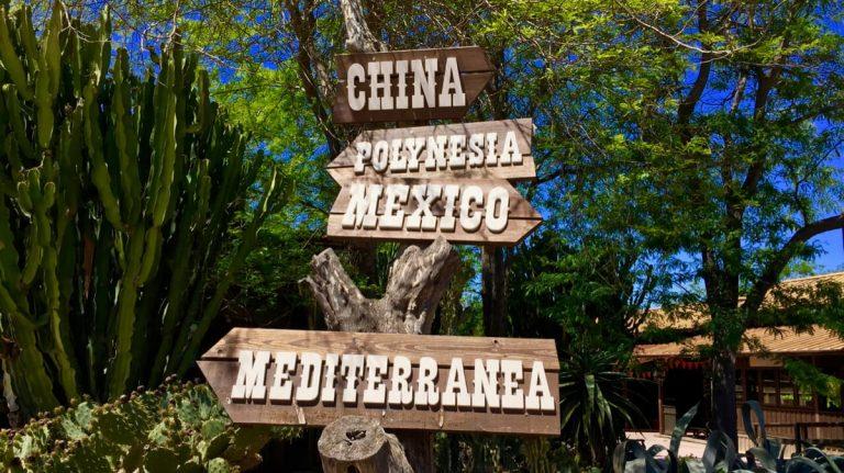 Letreros indicativos de las diferentes áreas de PortAventura Park en un árbol del Far West