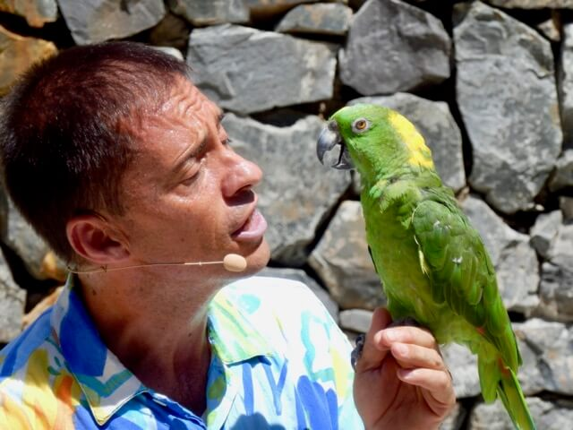 Aves del Paraíso en PortAventura