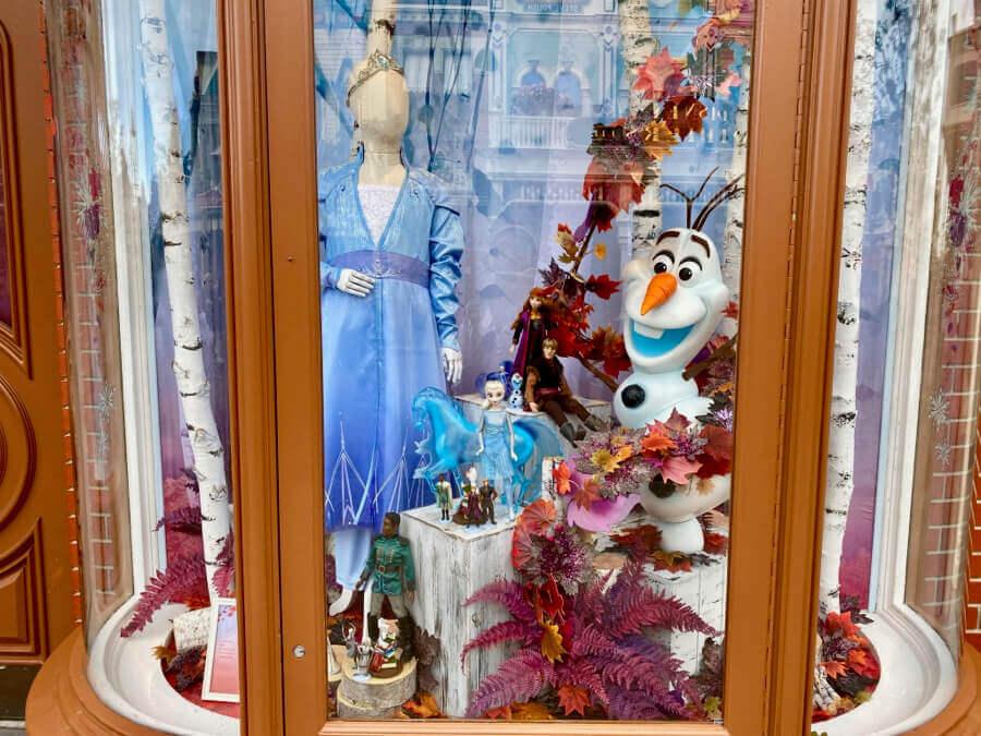 Merchandising Frozen