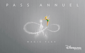 Pase Anual Magic Flex - Disneyland Paris