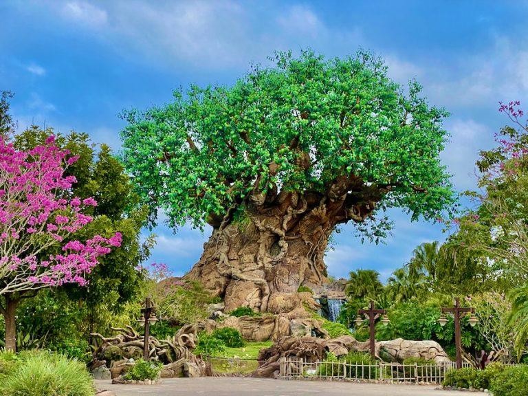 El árbol Tree of Life de Animal Kingdom en Walt Disney World
