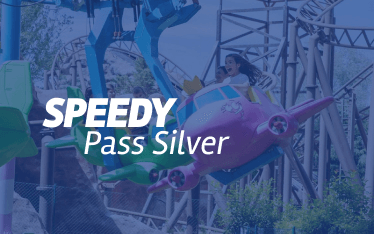 Logo Speedy Pass Silver
